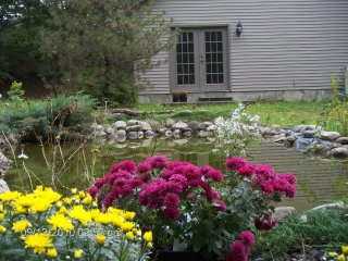 White Mountains - Family Retreat -Year Round- - Bethlehem vacation rentals