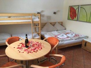 Appartement bis 4 Personen am Erlebnisberg und Skikarussell - Winterberg vacation rentals