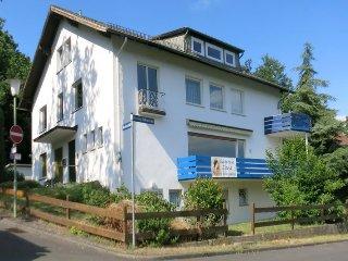 2-Zi Wohnung #11 in ruhiger Lage - Kassel vacation rentals