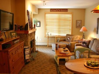 PP521 Passage Point ~ RA131008 - Copper Mountain vacation rentals