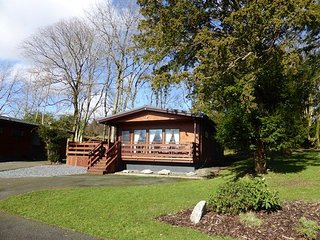 Birch 22 With Hot Tub, Newton Stewart - Beautiful lodges situated on Scotland's magnificent West Coast - Birch Plus Lodges - New Galloway vacation rentals
