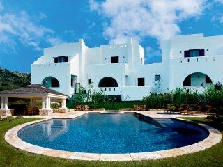 Depis Naxos Elegant villa with pool and jacuzzi+ free car rental - Plaka vacation rentals