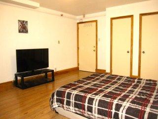 Beautiful Bachelor - DOWNTOWN Brampton - Brampton vacation rentals