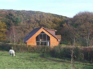 Bright 3 bedroom Cabin in Dumfries - Dumfries vacation rentals