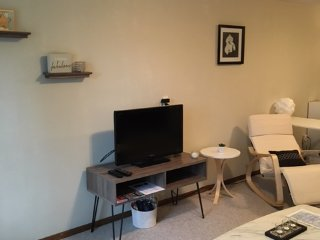 Upscale home with private entrance, patio and yard - Bloomington vacation rentals