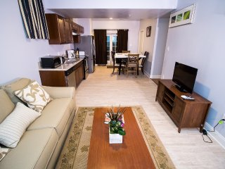 Cozy 3 Bedroom Spacious Modern Home - Boyds vacation rentals