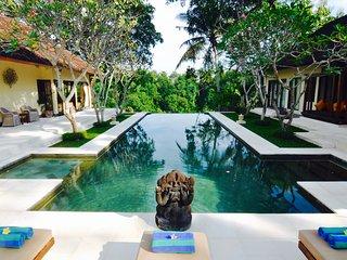 Luxury cliff-top villa: river view + tennis court - Canggu vacation rentals
