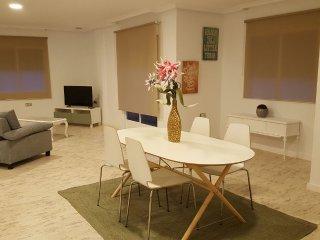 Beautiful Condo with Television and Microwave - Los Alcazares vacation rentals