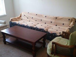 Comfortable Couch in Livingroom + Free Breakfast & Indian Dinner -Orlando - Orlando vacation rentals