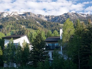 Four Seasons Condo - Teton Village vacation rentals