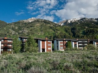 Tensleep Condo - Teton Village vacation rentals
