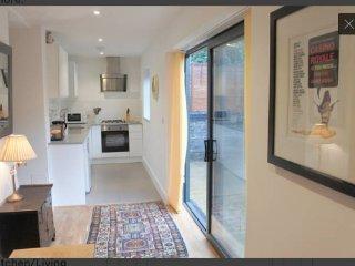 Cosy 2 Bedroom Garden Flat in Battersea/Clapham - London vacation rentals