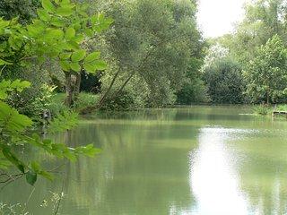 gîte à la maison de l'étang - Sampigny vacation rentals