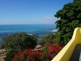 Luxury Beachfront Villa on Private 1.7 Acre Property with Stunning Rooftop Views - Treasure Beach vacation rentals