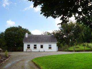 Cong, Lough Corrib, County Mayo - 14871 - Cong vacation rentals