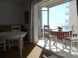 Studio en bord de plage - Vue latérale mer. Accès direct plage- Parking. - Roses vacation rentals