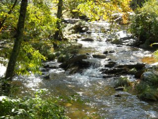 A River Runs Through It - Boone vacation rentals