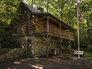 Perfect Cabin with Internet Access and A/C - Todd vacation rentals