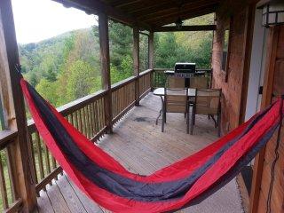 Cozy 3 bedroom Sugar Grove Cabin with Internet Access - Sugar Grove vacation rentals