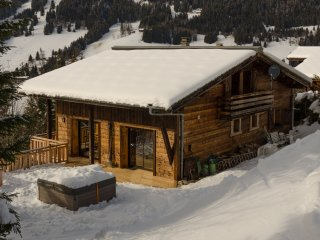 Chalet Les Carres - Les Gets vacation rentals