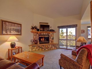 Nice House with Internet Access and Sauna - Dillon vacation rentals