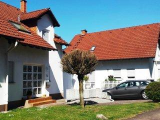 Lemberg, wohnen am Waldrand....wandern und Fahradfahren... - Lemberg vacation rentals