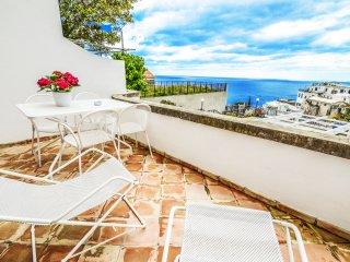 APPARTAMENTO CLEO - AMALFI COAST - Positano - Positano vacation rentals