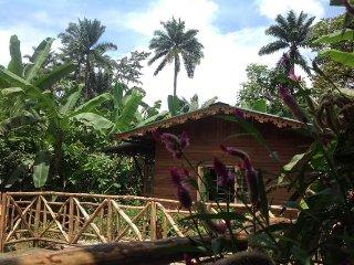 Casa Ediana, gîte rural de charme en altitude - Trinidade vacation rentals