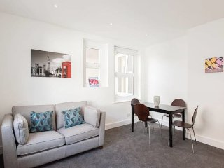 Bright and Modern Central London Apartment (WR1) - London vacation rentals