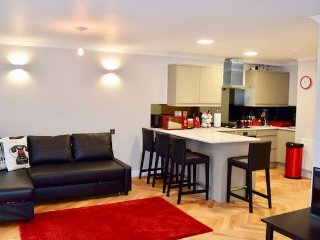 Bright 2 bedroom London Condo with Internet Access - London vacation rentals