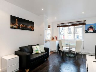 Nice 2 bedroom London Apartment with Internet Access - London vacation rentals