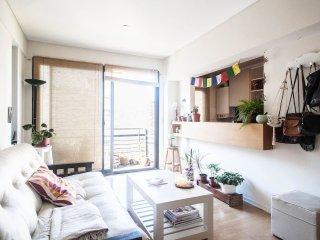Beautiful 1 bedroom apt in top Palermo area - Buenos Aires vacation rentals