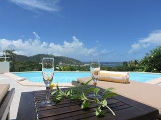 VILLA CONTEMPORAINE VUE MER CALME ET TRANQUILITE - Saint Martin vacation rentals
