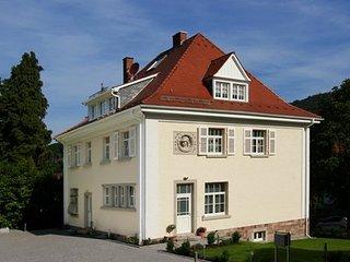 LLAG Luxury Vacation Apartment in Baden Baden - quiet, central, exclusive - Baden-Baden vacation rentals