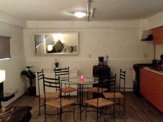 THE BASEMENT STUDIO NEAR CONDESA & WTC, IDEAL 4 COUPLES - Mexico City vacation rentals