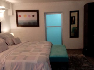 THE COZY BASEMENT STUDIO NEAR CONDESA & WTC, IDEAL 4 COUPLES - Mexico City vacation rentals