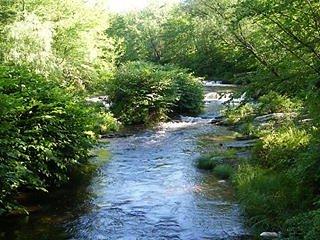 Quiet Cozy Stream Side Retreat - Cresco vacation rentals