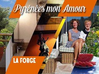 """LA FORGE """"Pyrénées mon Amour"""" 3 personnes - Saint-Paul-de-Fenouillet vacation rentals"""