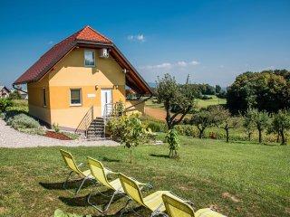 Apartments Vinska Trta - Apartment with Balcony - App 5+2 - Catez ob Savi vacation rentals