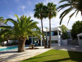 Magnificent Architect's Villa in a Palm Grove - Sant Antoni de Portmany vacation rentals