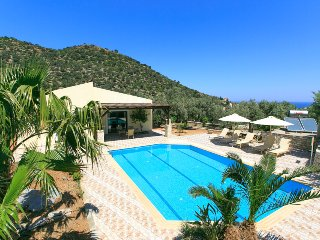 Nice Villa with Internet Access and A/C - Milopotamos vacation rentals