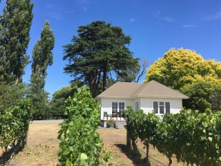 Tuki Vineyard Cottage, Havelock North, Hawke's Bay wine country - Havelock North vacation rentals