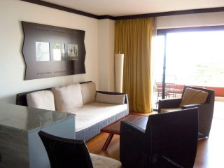 Comfortable Condo with Internet Access and A/C - Mahina vacation rentals