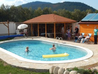 Rila Mountain Lodge,Private Mountain Villa with Swimming Pool,Ideal for Families - Govedartsi vacation rentals