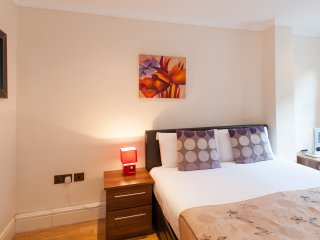 *Reduced* Downtown London, Zone 1 Apartment - London vacation rentals
