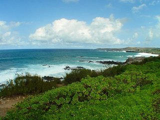 Kapalua Bay Villas 37G2 Wonderful Kapalua Bay Villa!!  Steps To The Pool! - Lahaina vacation rentals