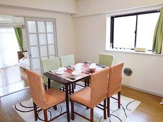 Shinagawa cozy apt.with poketWi-Fi #4T2 - Shinagawa vacation rentals