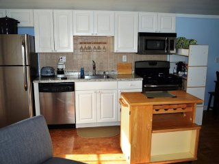 2 BR Beach House Steps to Beach and Downtown Salisbury Center! - Salisbury vacation rentals