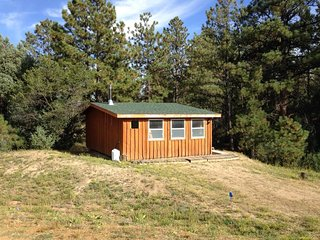 Cozy Cabin For 2 Near The Royal Gorge - Cotopaxi vacation rentals