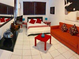 Handy Studio , No EXTRA GUESTS FEE - Coconut Grove vacation rentals